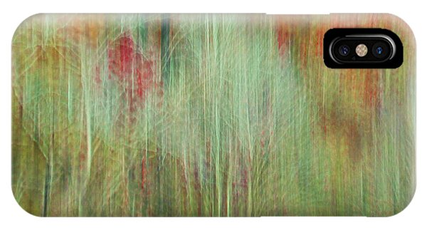 Fall Color Abstract 2 IPhone Case