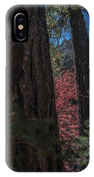 IPhone Case featuring the photograph West Fork Perspective by Tam Ryan