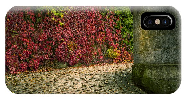 Canvas Wall Art Fall Colors IPhone Case