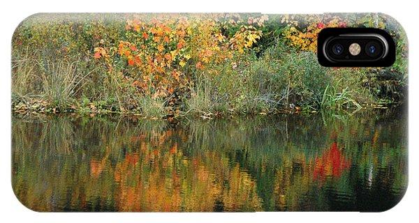 Fall Colors I IPhone Case