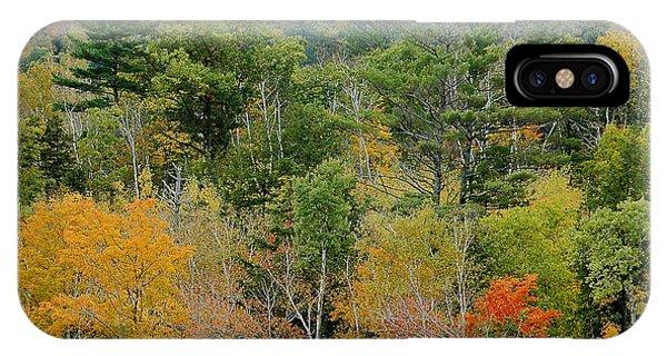 Fall Colors II IPhone Case