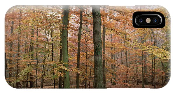 Catoctin Mountain Park iPhone Case - Fall Colors In Catoctin Mt. Park by Gerry Ellis