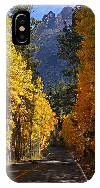 Fall Colors In The Eastern Sierra Nevada IPhone Case