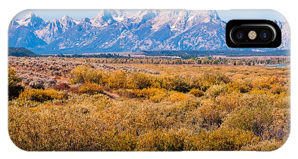 Fall Colors In The Tetons   IPhone Case
