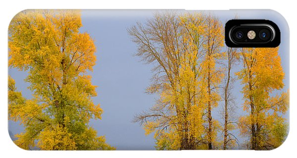 Fall Comes To The Lamar Valley IPhone Case