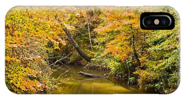 Fall Creek Foliage IPhone Case