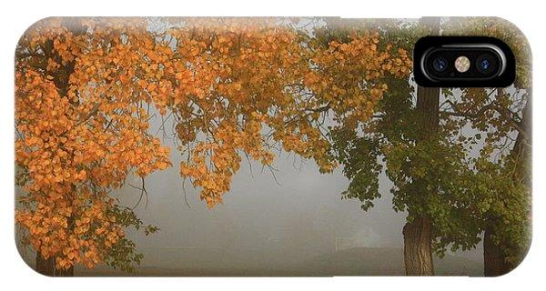 Fall Fog IPhone Case