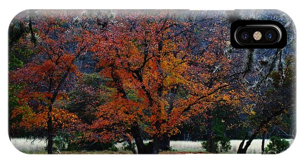 Fall Foliage At Lost Maples State Park  IPhone Case