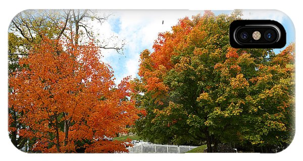 Fall Foliage Colors 09 IPhone Case