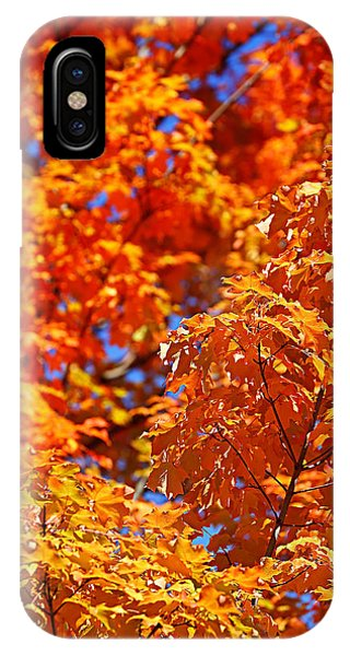 Fall Foliage Colors 17 IPhone Case