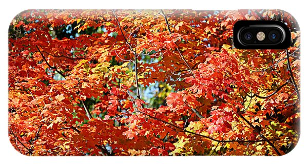 Fall Foliage Colors 22 IPhone Case