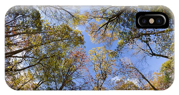 Fall Foliage - Look Up 2 IPhone Case