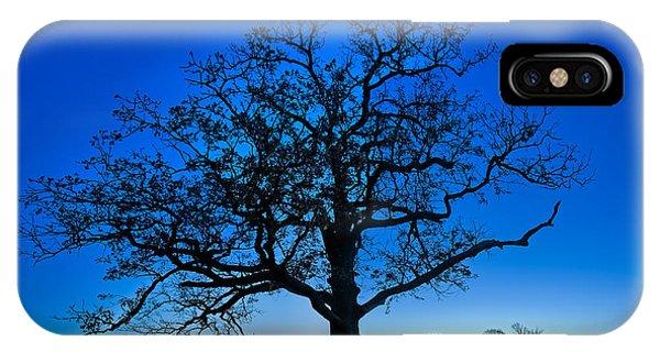 Fall Great Oak At Dawn IPhone Case