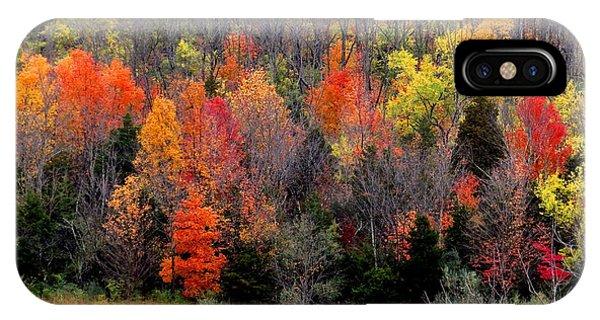Fall In Dayton Ohio IPhone Case