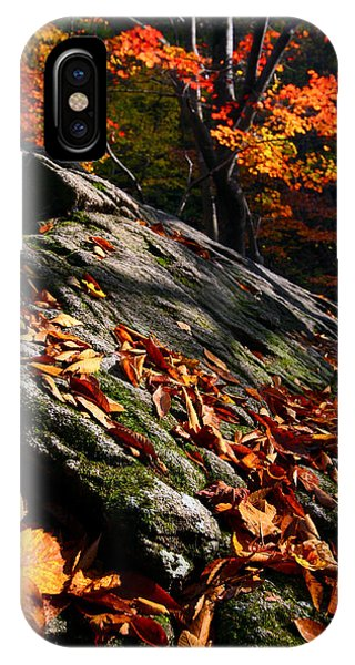 IPhone Case featuring the photograph Fall In Gyeryongsan by Brad Brizek