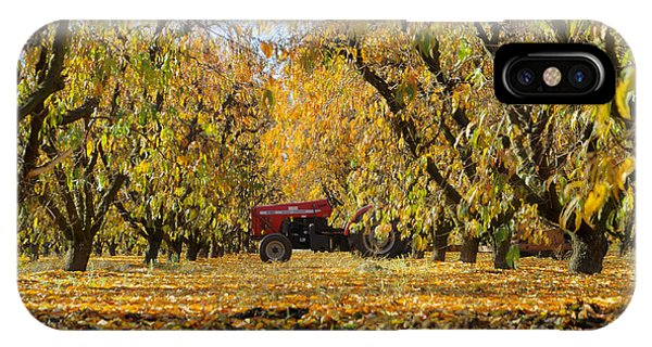 Fall In The Peach Orchard IPhone Case