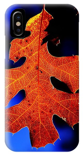 Fall Leaf Closeup IPhone Case