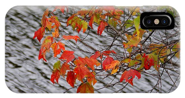 Fall Leaves Over The Lake IPhone Case