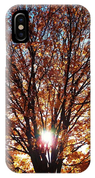 Fall Light IPhone Case