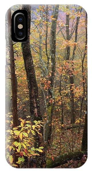 Fog Mist iPhone Case - Fall Mist by Chad Dutson