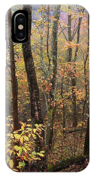 North Carolina iPhone Case - Fall Mist by Chad Dutson
