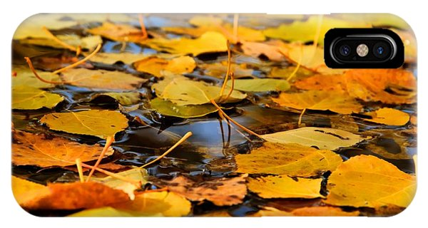 Fall On The Water  IPhone Case