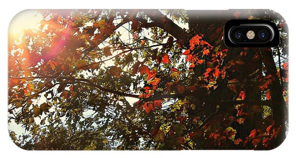 Fall Sun IPhone Case