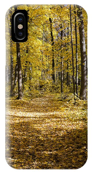 Fall Trail - Arboretum - Madison - Wisconsin IPhone Case