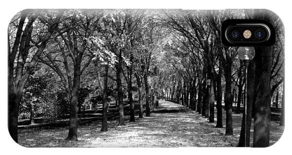 Fall Tree Promenade Landscape IPhone Case