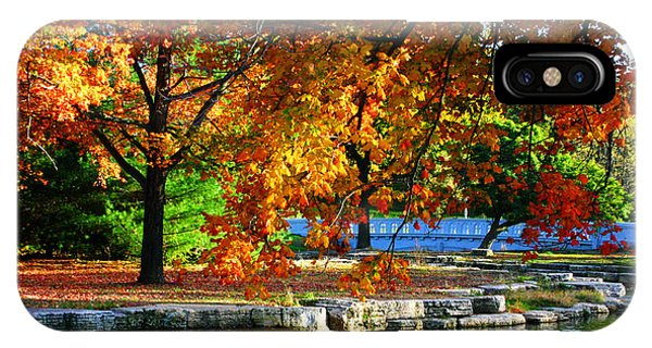 Fall Trees Landscape Stream IPhone Case
