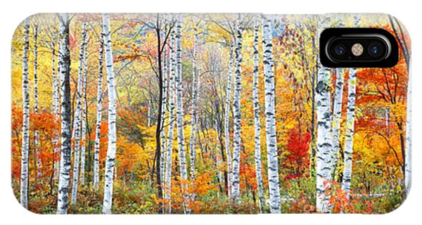 Fall Trees, Shinhodaka, Gifu, Japan IPhone Case