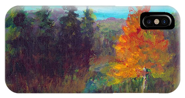 Fall View IPhone Case