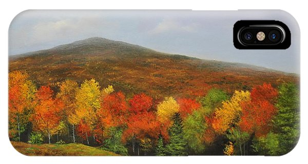 Fall Vista IPhone Case