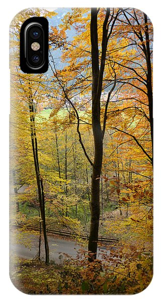 Fall Woods Phone Case by Marie Sullivan