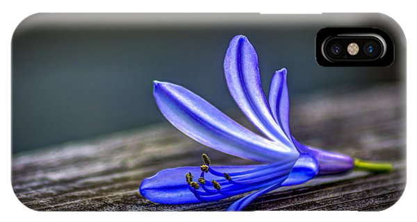 Lily iPhone Case - Fallen Beauty by Marvin Spates