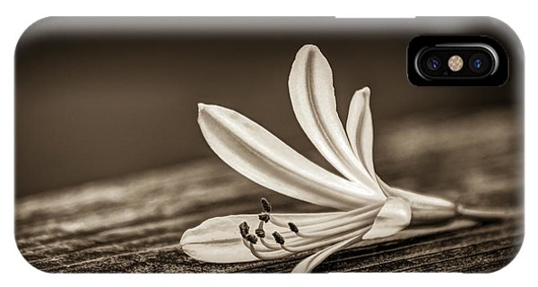 Wild Violet iPhone Case - Fallen Beauty- Sepia by Marvin Spates