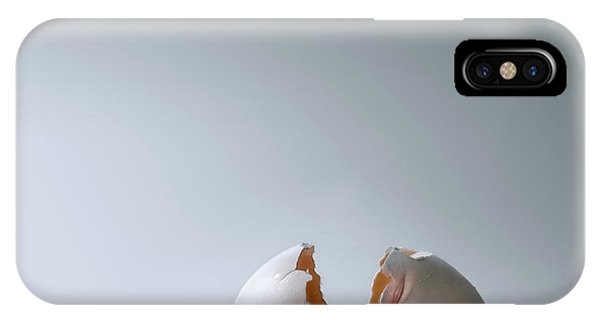 Controversial iPhone Case - Fallen Egg by Diane Diederich