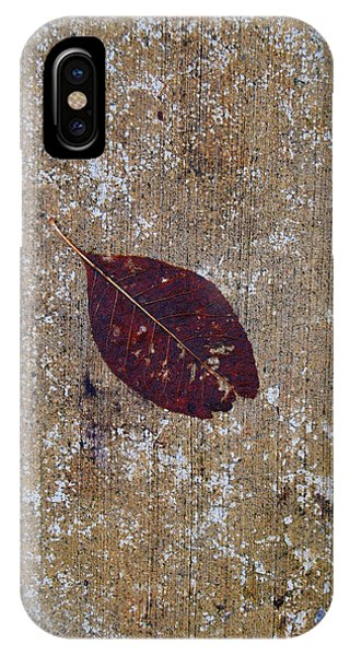 IPhone Case featuring the photograph Fallen by Jani Freimann