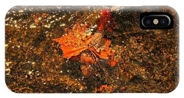 Fallen Leaf Creek IPhone Case