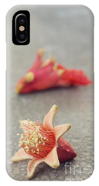Fallen Pomegranate Blossoms IPhone Case