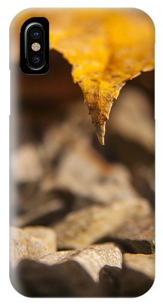 Falling Color Phone Case by Zachary Hitchcock