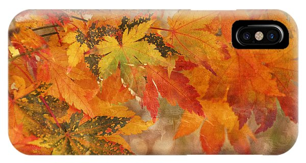 Falling Colors I IPhone Case