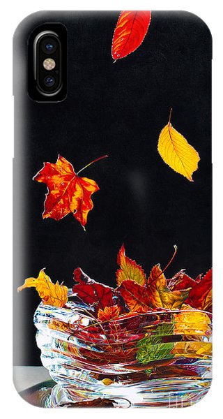 Falling Into Place Phone Case by Arlene Steinberg