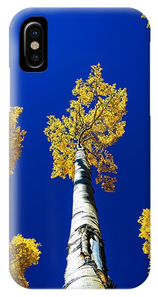 American Southwest iPhone Case - Falling Leaf by Chad Dutson