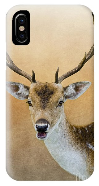 Wildlife Fallow Stag Fine Art IPhone Case