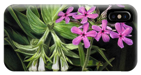 False Gromwell With Prairie Phlox IPhone Case