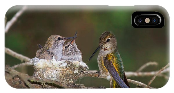Family Love IPhone Case