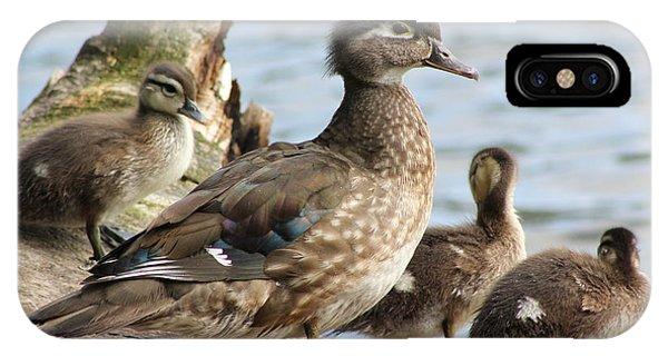 Family Of Ducks Phone Case by Michael Paskvan