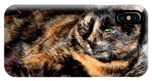 Fancy Cat IPhone Case