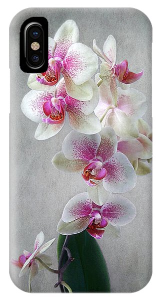 Fancy Orchids IPhone Case